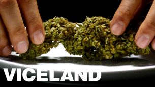 Wildest Weed Food Ever